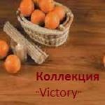 VICTORY 32 класс