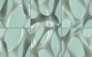 Edition 1 Ross Lovegrove Bone Structure