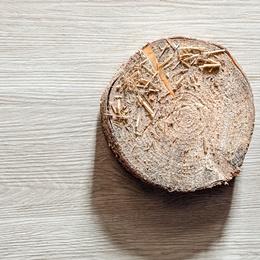 Vinilam Glue 2,5 mm 8855 Дуб Штур (4,16)