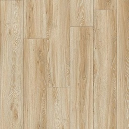Moduleo Transform Dryback Blackjack Oak 22220