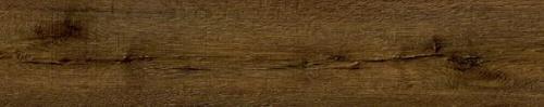FF-1581 Пекан Айова