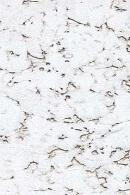 Corksribas Condor Snow наст. Клеевое